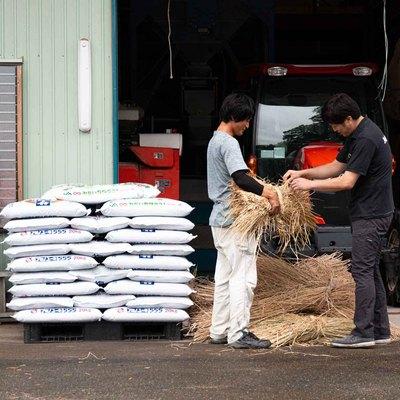 やまびこ農業 - 釉薬の原料となる藁